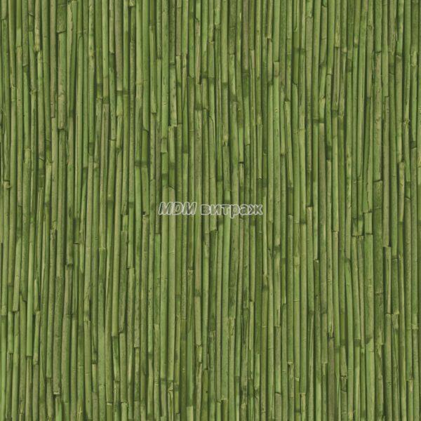 3800072 alkor тростник зелёный