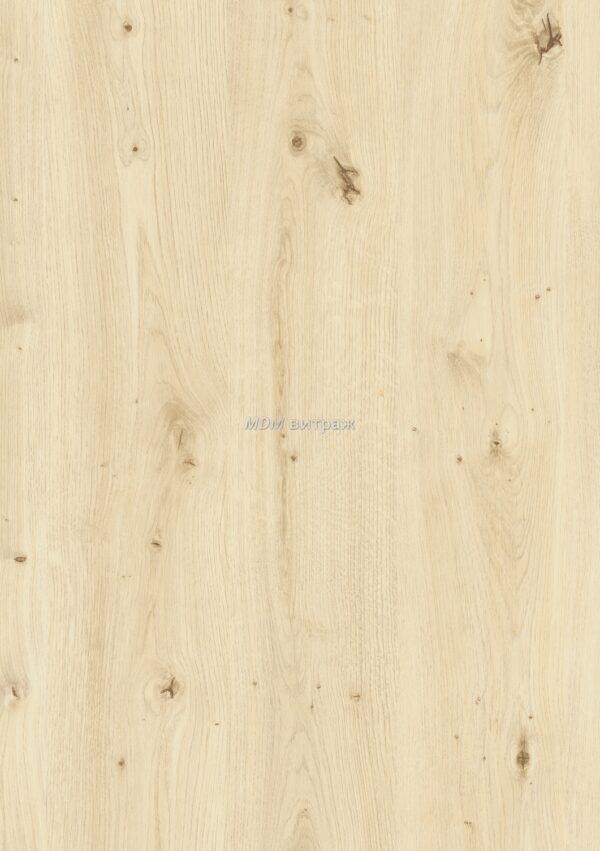 2008299 d-c-fix дерево дуб скандинавский